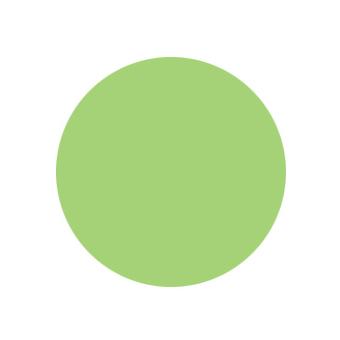 Краска светло-зеленая для моделей Акрил-19 Zvezda