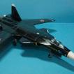 С-47 Беркут